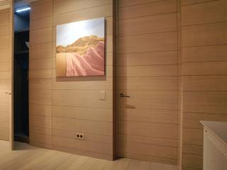 Habillage mural avec portes affleurantes
